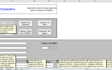 Application Excel pour DebitPro